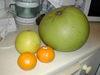 Fruit_1